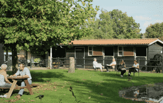 LIVP Summer Course